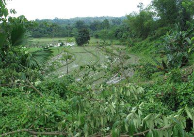 OBCI - Mindanao (Lake Sebu) 005-452