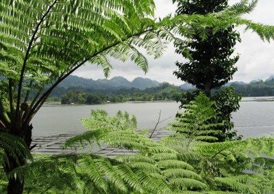 OBCI - Mindanao (Lake Sebu) 014-456